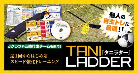taniladder.JPG
